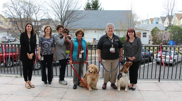 Creature Comfort Pet Therapy visits BASCS Elementary