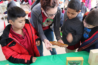 PASCS Elementary students attend Insects Rock