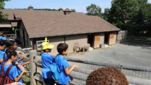 ilearn_summer_academy_turtle_back_zoo_field_trip_8